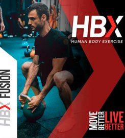 Curso HBX Fusion   ESHI