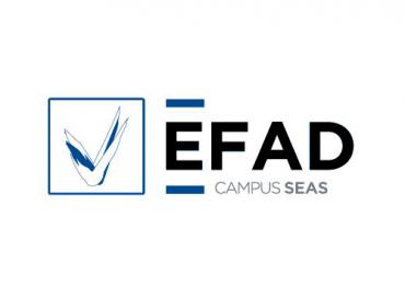 EFAD | Formación Online en Deporte