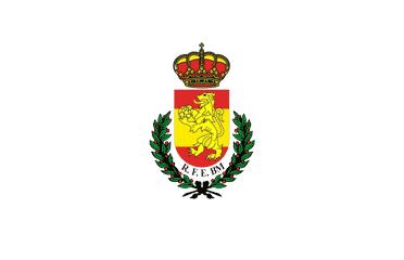Real Federación Española de Balonmano RFEBM Estudia Deporte